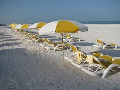 Beach umbrellas and recliners. #clearwaterbeach