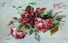 Full Sized Image: four red roses & buds, facing left, lowest head hangs down Catherine Klein, Art Floral, Watercolor And Ink, Watercolor Flowers, Retro, Flower Bird, Magnolia Flower, Flower Images, Vintage Flowers