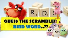 GUESS THE SCRAMBLED BIRD WORDS?? || ROCKCLIMBERS ||2020|| Riddle Puzzles, Fun Quizzes, Riddles, The Creator, Bird, Christmas Ornaments, Holiday Decor, Xmas Ornaments, Christmas Jewelry