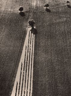 Mario Giacomelli - Paesaggio, Italy, 1979