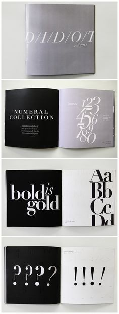 Didot Type Specimen Book - Celi Alena Birke / Design & Photography