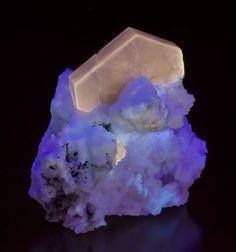 Apatite on Feldspar (fluorescent) from Bulachi Mine, Pakistan [db_pics/new2012/Apatite-Feldspar-Bulachi-Pakistan-86mm-JB549-UVA-14.jpg]