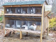 "Outdoor all-season rabbit hutch - even in cold weather this would be great with cover over the front and a ""vent"" to get rid of the ammonia from the rabbit urine. Heritage House. PP"