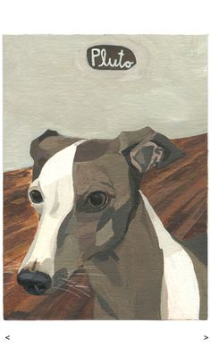italian greyhound painting