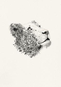 White Lioness - Giclée Print