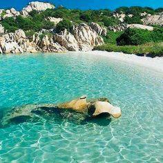 Cala Girgolu - San Teodoro . Sardinia/Cerdeña