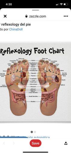 Baby Prayers, Prayer For Baby, Foot Chart, Inner Ear, Foot Reflexology, Thyroid, Plexus Products, Thyroid Gland