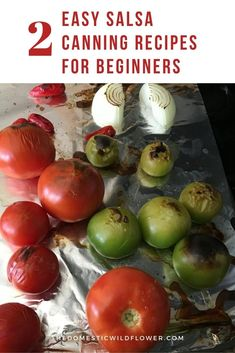 Making homemade salsa is a great way to use up all of the extra tomatoes from your garden and store them for winter. Discover how to make these 2 Easy Salsa Canning Recipes for Beginners. Canning Homemade Salsa, Salsa Canning Recipes, Easy Canning, Canning Salsa, Canning Tips, Jam Recipes, Canning Vegetables, Canning Tomatoes, Peach Healthy