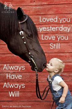 My heart has a special place for horses <3