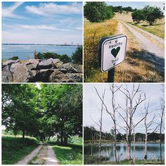 Boston Harbor Islands | iPhone Favorites | Alaina Ann Photography