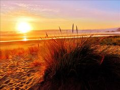KGW: SUNSET at Cannon Beach, OR 8 25 14