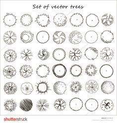architecture drawing of trees landscape architecture section - tree architecture drawing Landscape Architecture Section, Architecture Images, Landscape Design, Architectural Trees, Architectural Drawings, Trees Top View, Willow Tree Tattoos, Tree Plan, Tree Sketches