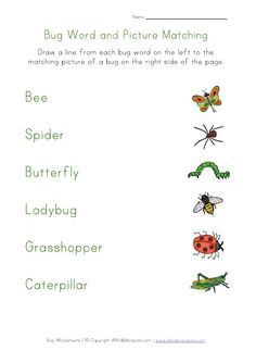 printable bugs word matching and lots of other printable sheets for bugs