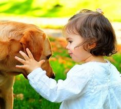 9 Ways to Get Your Dog Ready to Meet Your New Baby.  Will be very good to know in the future.