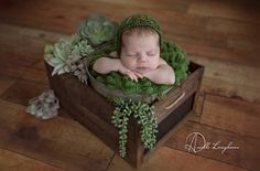 Pregnancy Photography, Newborn Baby Photography, Children Photography, Newborn Posing, Newborn Session, Newborn Photos, Newborn Studio, Baby Poses, Lifestyle Photography