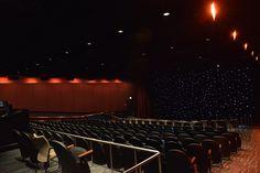 Samuel C. Johnson Family Star Theater at the Adler Planetarium
