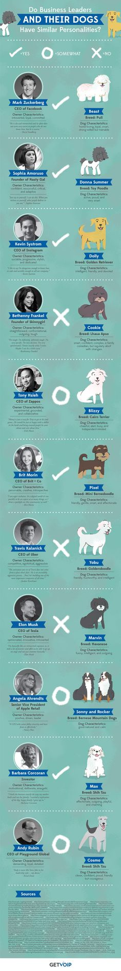 Do Business Leaders and Their Dogs Have Similar Personalities? #infographic #Dogs #Entrepreneur #Pets