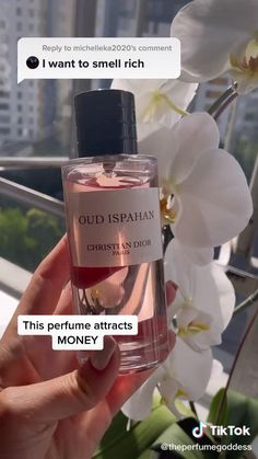 Best Perfume, Cheap Perfume, Perfume Scents, Fragrance, Bath And Body Works Perfume, Perfume Collection, Health And Beauty Tips, Parfum Spray, Up Girl