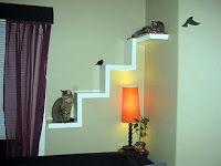 ME ADOTA?: Prateleiras para gatos