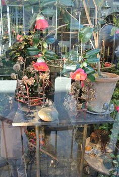 http://Havetid.blogspot.com: København Tage Andersen blomsterkunstner forretning