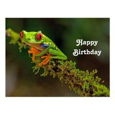 Frosch geburtstagswünsche Geburtstagswünsche Böse