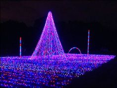dancing lights of christmas in nashville its fun for all ages jellystone park is the largest drive - Jellystone Park Nashville Christmas Lights