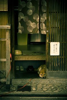 Japanese traditional house entrance