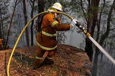 More than 90 fires are burning across NSW, with 20 still out of control. Bushfires In Australia, Thunderstorms, South Wales, Sydney, Island, History, Country, Spring, Outdoor