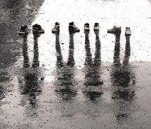 love puddle pics