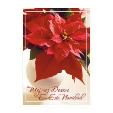 Spread season's greetings with sentiments in Spanish to clients and customers this year with Hallmark Business Connections' holiday cards! Spanish Christmas, Holiday Cards, Connection, Greeting Cards, Seasons, Business, Inspiration, Get Well Soon, Christian Christmas Cards