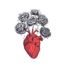 'Heart with peonies' Wandbehang von Valeriya Korenkova Kodamorkovkart Herz Tattoo, Desenho Tattoo, Anatomy Art, Valentines Day Hearts, Heart Art, Art Plastique, Art Inspo, Peonies, Art Drawings