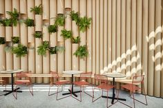 See how they used cardboard tubes to make a remarkable creative space for these food and drink vendors