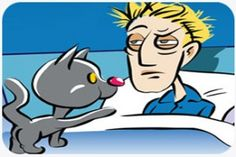 Got Catsomnia? What to do when your cat keeps you up at night.—This is dedicated to everyone who's been awakened at the crack of dawn by their cat! The fact is that it may not be . . . (read more) http://blog.21stcenturypet.com/2014/03/got-catsomnia-what-to-do-when-your-cat-keeps-you-up-at-night/