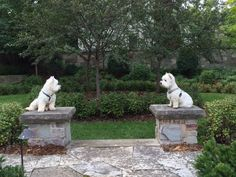 Roddy and Windsor on Guard