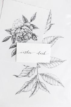 Blog — Esther Clark Illustration & Calligraphy