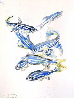 Zebrafish, original watercolor painting, aquarium fish art, watercolor fish, fish lover 12 X 9 in