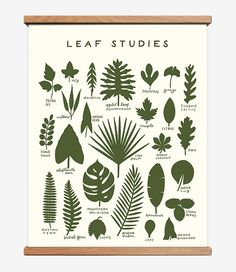 Leaf Studies 16 x 20 Screen Print by WorthwhilePaper on Etsy #etsy #summer #nature