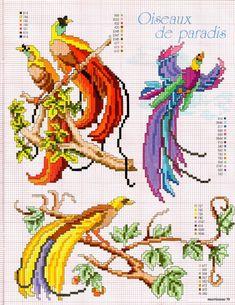 Журнал: Les idees de Marianne №9 2003 (вышивка) - Рукодельница, вышивка - ТВОРЧЕСТВО РУК - Каталог статей - ЛИНИИ ЖИЗНИ Cross Stitch Bird, Cross Stitch Animals, Cross Stitch Charts, Cross Stitch Designs, Cross Stitching, Cross Stitch Embroidery, Cross Stitch Patterns, Needlepoint Patterns, Embroidery Patterns