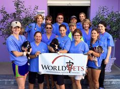World Vets Albania volunteer team!  International aid for animals.  www.worldvets.org