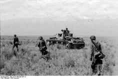 Bundesarchiv Bild 101III-Altstadt-055-12, Russland, SS-Division Wiking beim Vormarsch.jpg