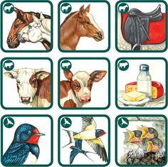 betexa, pexetrio, naučné karty, kreativní hra, zvířata, zvířátka Animals For Kids, Farm Animals, Animals And Pets, Animal Habitats, Animal Activities, Bible Crafts, Kids Gifts, Sheep, Kindergarten