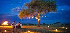 Eat, See, Do: World's Most Beautiful Al Fresco Dinning Spots. Singita Sarbora Tented Camp in South Africa. Honeymoon Trends, Tanzania Safari, True Romance, World's Most Beautiful, Beautiful Images, Luxury Holidays, African Safari, Tent Camping, Glamping