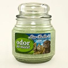 For orders you don't like including pets  then try this Odor no more