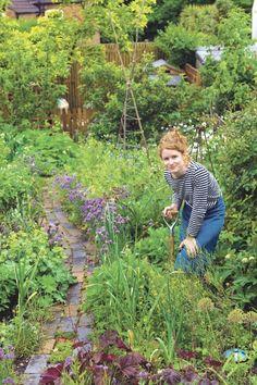 Kreatives Chaos: Auch in ihrem eigenen Garten in Birmingham praktiziert Alys Fowler das gemütliche Gärtnern, Blumen und Gemüse wachsen durcheinander