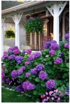 . Reminds me of my grandma Charpia house