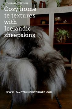 Blue Interiors, Uk Homes, Sheepskin Rug, Pampas Grass, Bohemian Decor, Dried Flowers, All The Colors, Cosy, Online Business