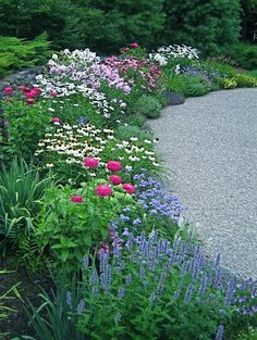 Beautiful perennial border