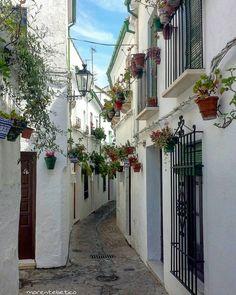"3,616 Likes, 78 Comments - Miguel Angel (@morentebetico) on Instagram: ""20/07/16 Priego de Córdoba, Córdoba, SPAIN.  #thisis_theworld #world_great #todoclick…"""