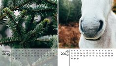 A free 2015 calendar template for photoshop http://www.angiemuldowney.co.uk/2014/10/free-2015-calendar-template-for-photoshop/ #printable #download #free #calendar