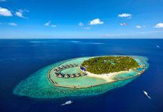 ellaidhoo maldives - Google Search